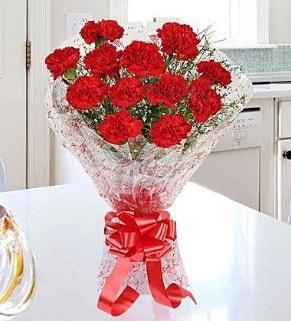 12 adet kırmızı karanfil buketi  balgat çiçek siparişi Ankara çiçek yolla