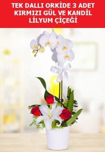 Tek dallı orkide 3 gül ve kandil lilyum  Balgat online çiçekçi telefonları