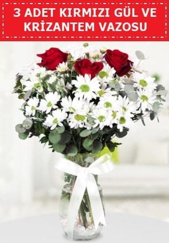 3 kırmızı gül ve camda krizantem çiçekleri  Balgat çiçek gönderme sitemiz güvenlidir