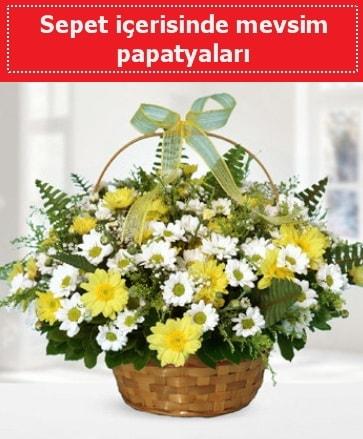 Sepet içerisinde mevsim papatyaları  Balgat  ucuz çiçek , çiçekçi , çiçekçilik