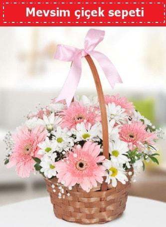 Mevsim kır çiçek sepeti  Ankara çiçekçiler hediye çiçek yolla