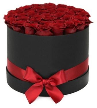 Siyah Kutuda 25 adet kırmızı gül  Ankara İnternetten çiçek siparişi