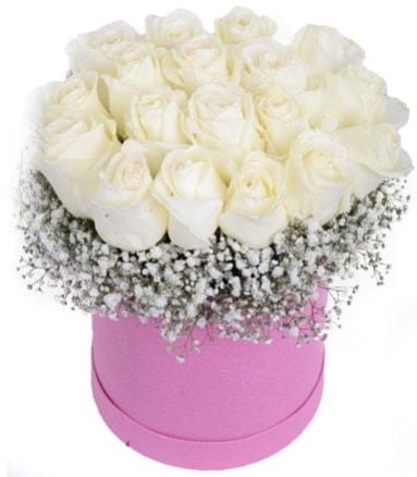 Renkli kutuda 19 adet beyaz gül  Balgat Ankara çiçek siparişi sitesi