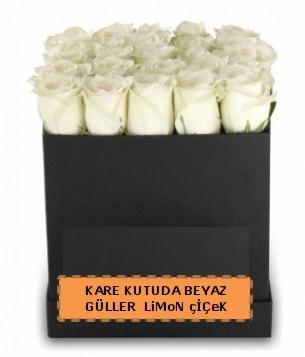 Kare kutuda 17 adet beyaz gül tanzimi  Ankara internetten çiçek satışı