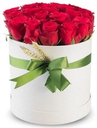 25 adet özel kutuda kırmızı gül  Ankara cicekciler , cicek siparisi  söz çiçekler